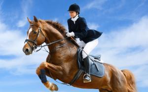 jockey_horse_jump